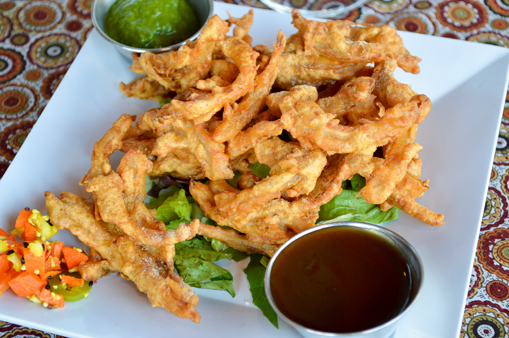 gourmet-india-good-eats-san-diego-california-mike-puckett-gesdw-8-of-32