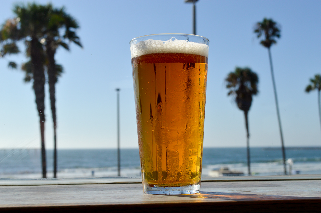 south-beach-bar-grille-good-eats-san-diego-california-mike-puckett-gesdw-2-of-21