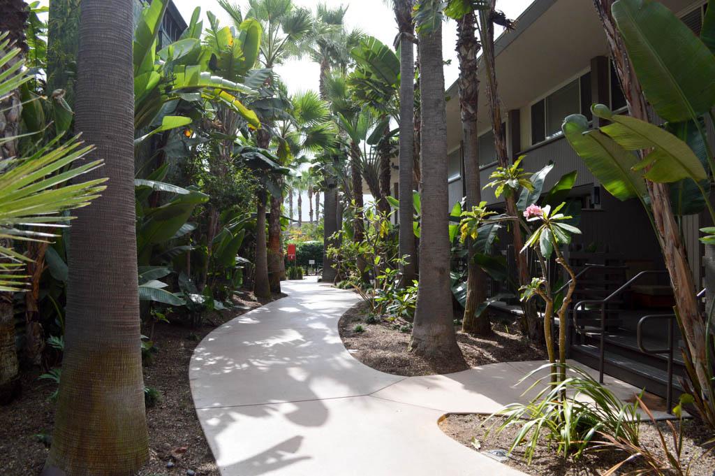 Hyatt Regency Mission Bay Good Eats San Diego California Local Mike Puckett GW-15