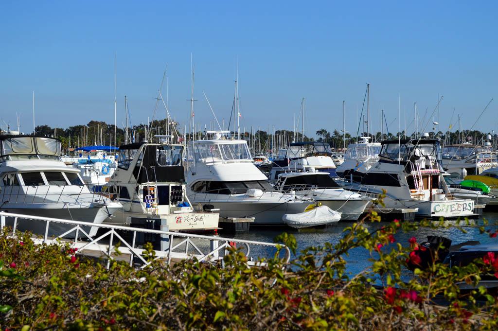 Hyatt Regency Mission Bay Good Eats San Diego California Local Mike Puckett GW-23