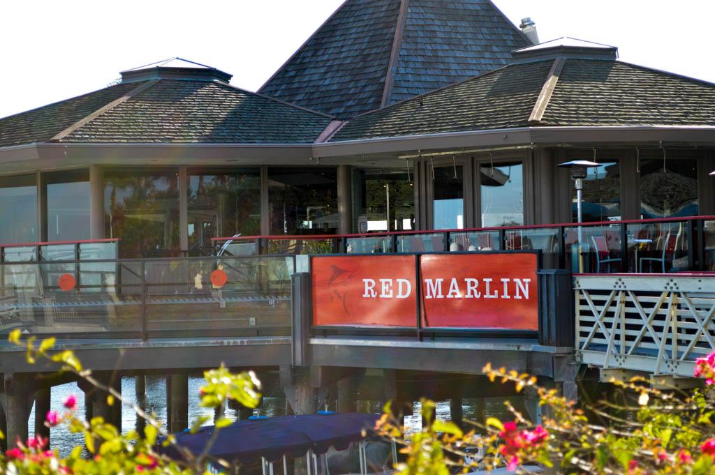 Red Marlin Hyatt Mission Bay Good Eats San Diego California Local Mike Puckett Photography WEB 1-2